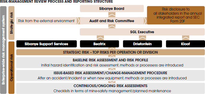 Risk-management review process and reporting structure [graph]