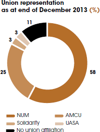 Union representation as at end of December 2013 (%) [graph]